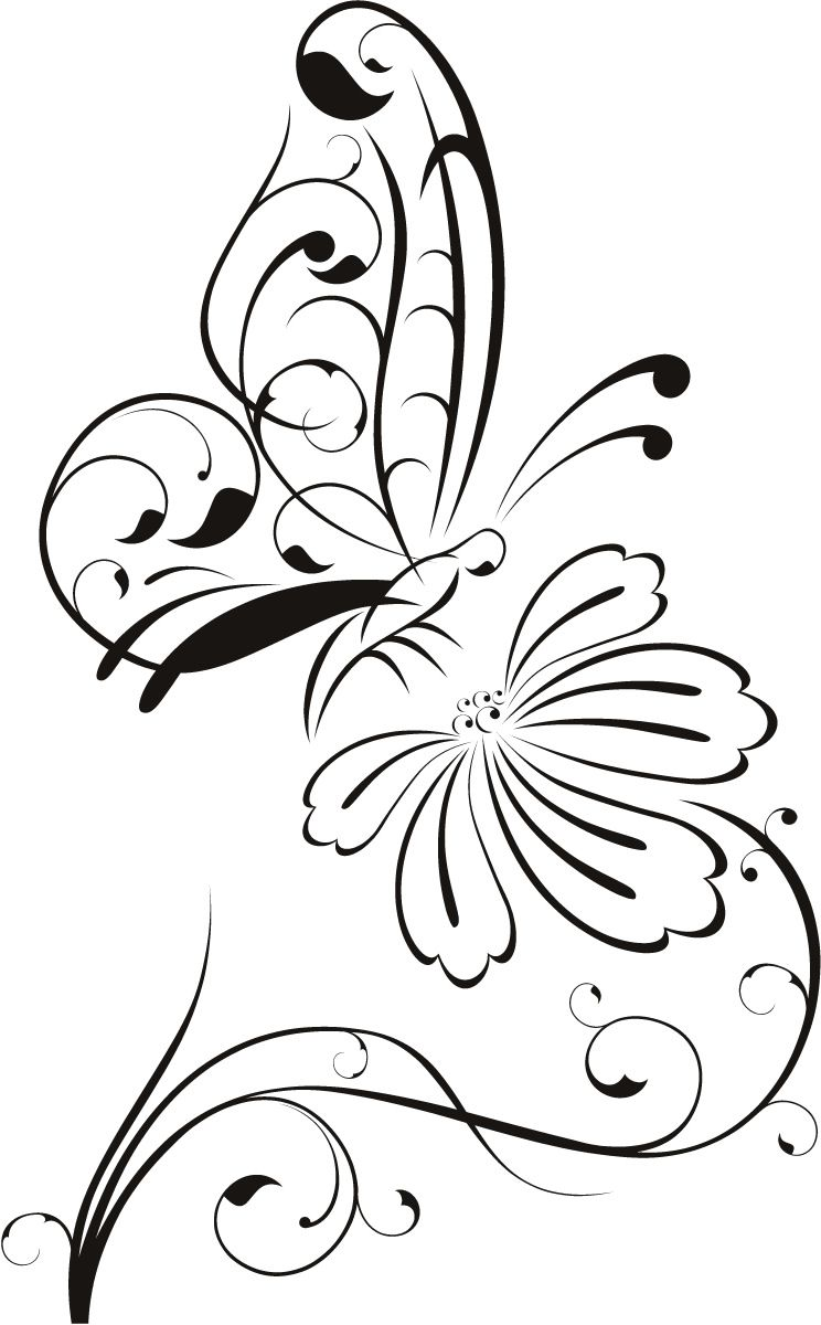 744x1200 Details About Butterfly On Flower Outline Floral Wall Decal Wall