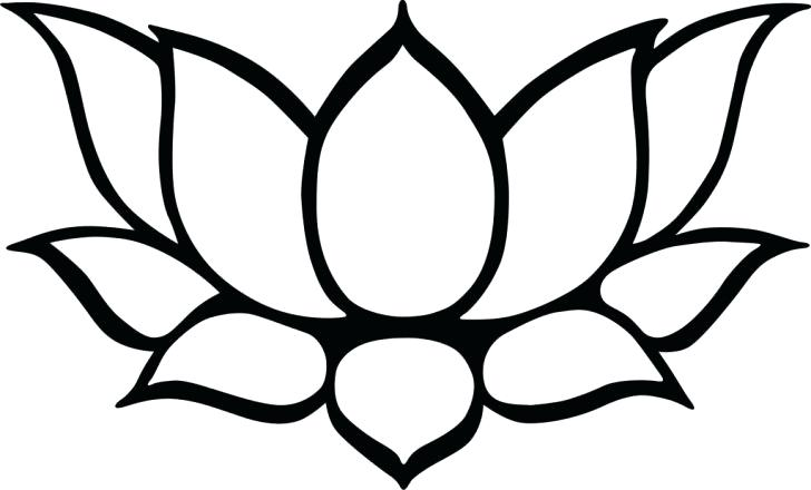 728x440 drawing lotus flower flower drawing lotus draw lotus flower tattoo