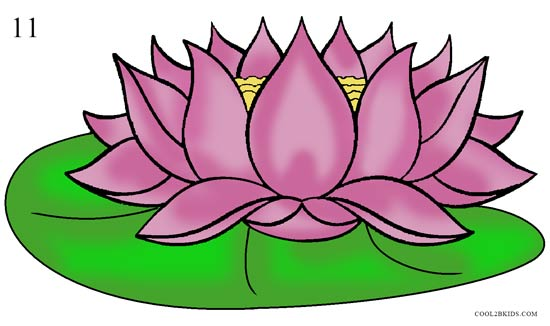 550x326 How To Draw Lotus Flower