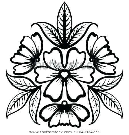 450x470 Rose Flower Drawing Rose Flower Drawings In Pencil Step