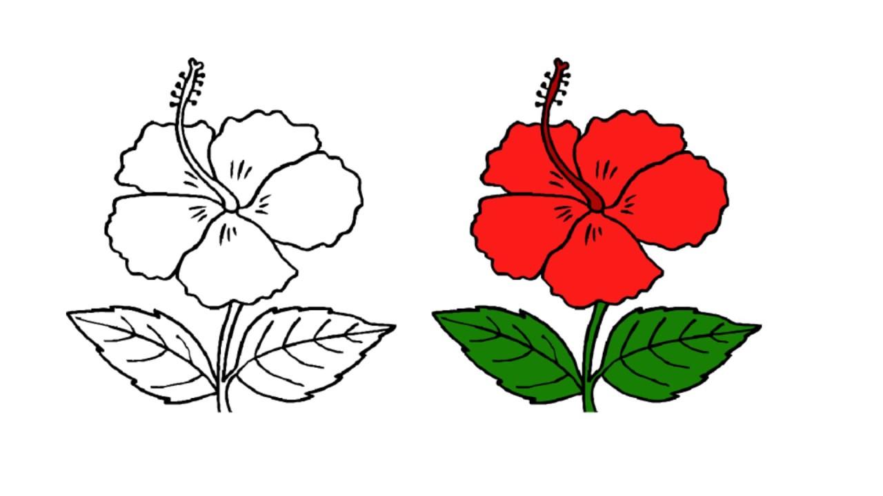 1280x720 + Beautiful Hawaiian Flower Drawing Inspiration Holiday Fond