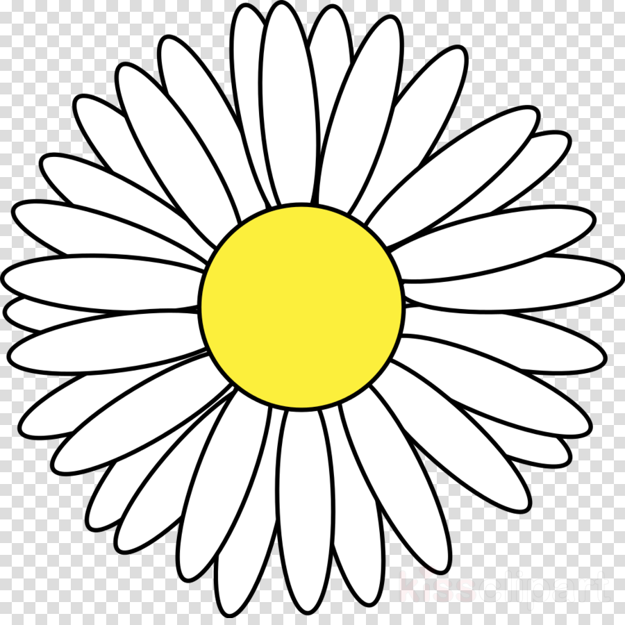 900x900 Drawing, Cartoon, Flower, Transparent Png Image Clipart Free