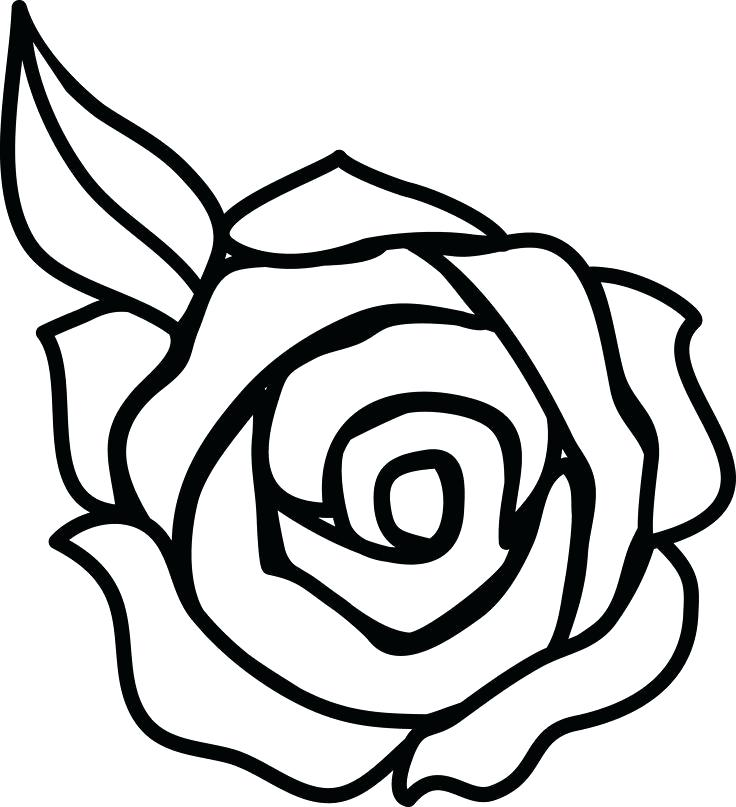 736x807 How To Draw A Rose Cartoon Image Titled Draw A Flower Step Easy