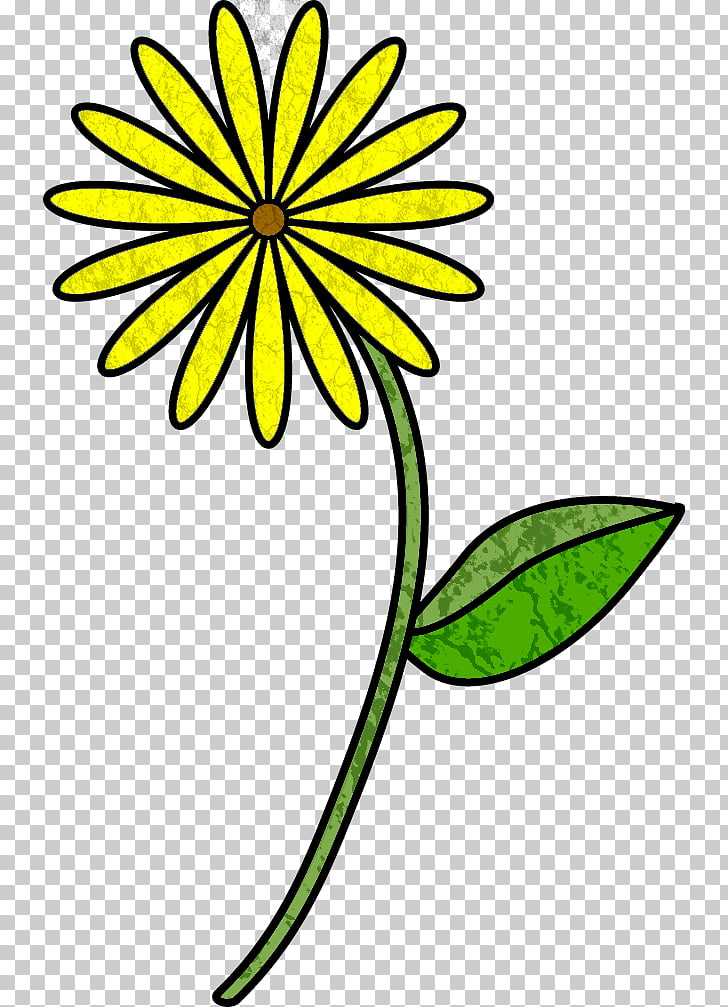 728x1007 plant stem flower drawing flower stem template png clipart