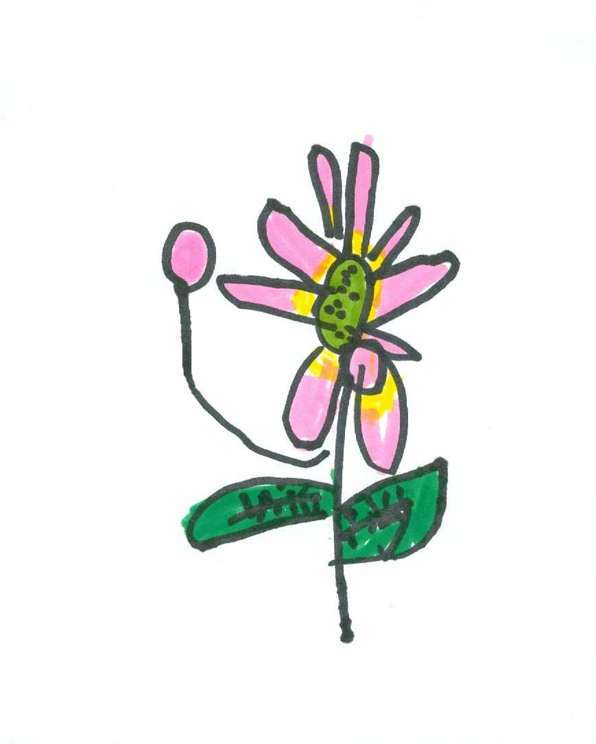869x1085 Impressive Kids Flower Drawing Gallery