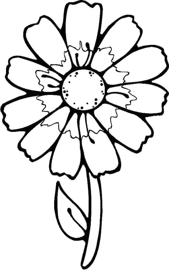 700x1118 Flower Drawings For Kids Easy Flower Drawings For Kids How To Draw