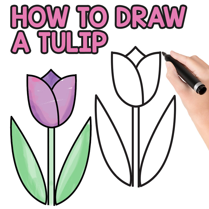 700x700 How To Draw A Tulip For Kids
