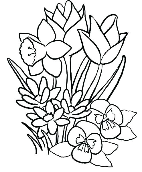 496x601 Drawings For Kids Of Flowers Flower Garden Drawing For Kids Garden