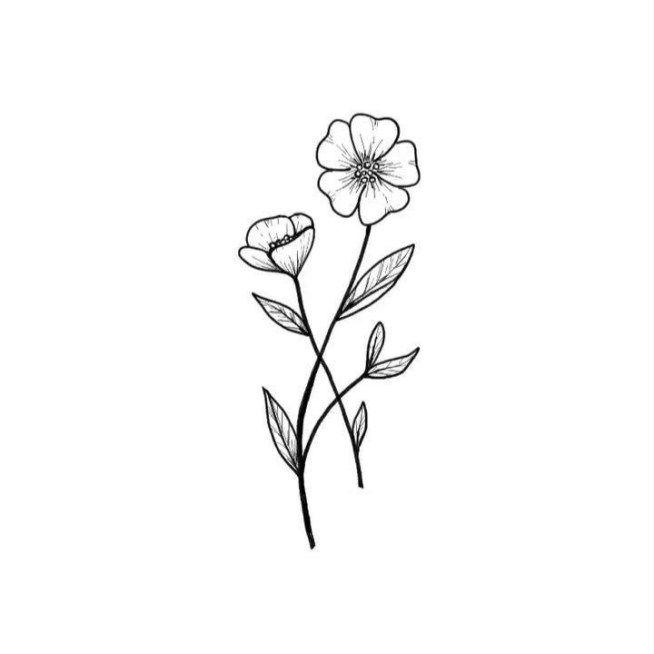 Flower Drawing Ideas