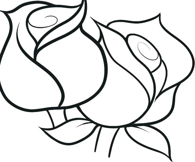 643x535 Easy Coloring Pages To Draw Flower Lovely Or Download P Dpalaw