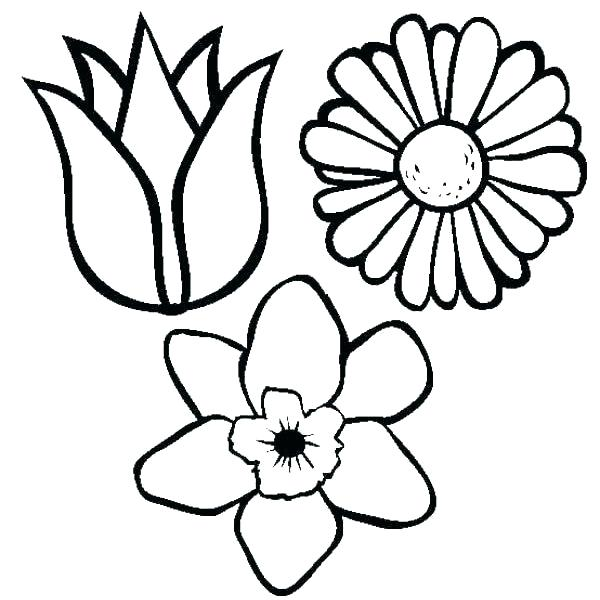 600x600 Christmas Flowers Coloring Pages Bell Flower Drawing Merry