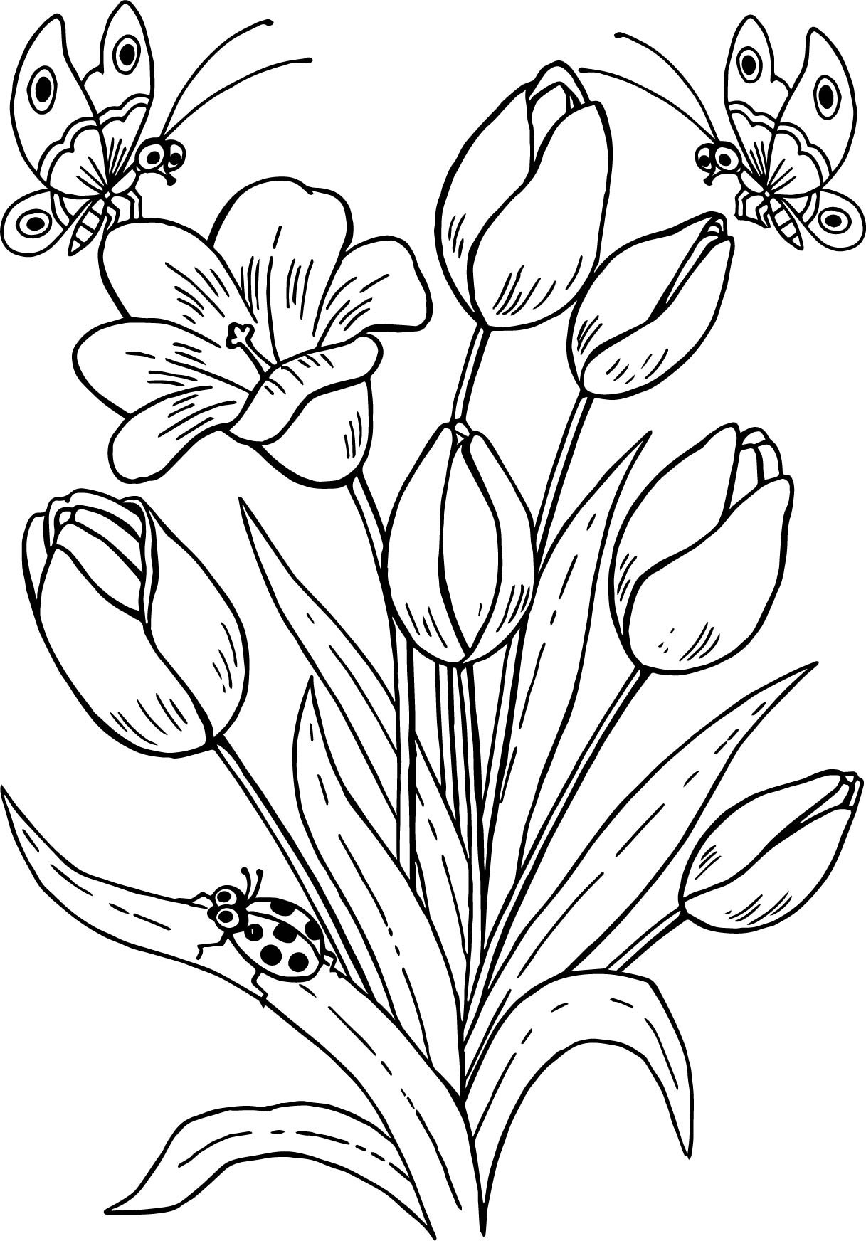 1217x1744 Tulip Coloring Pages Flower Drawing At Getdrawings Com Free