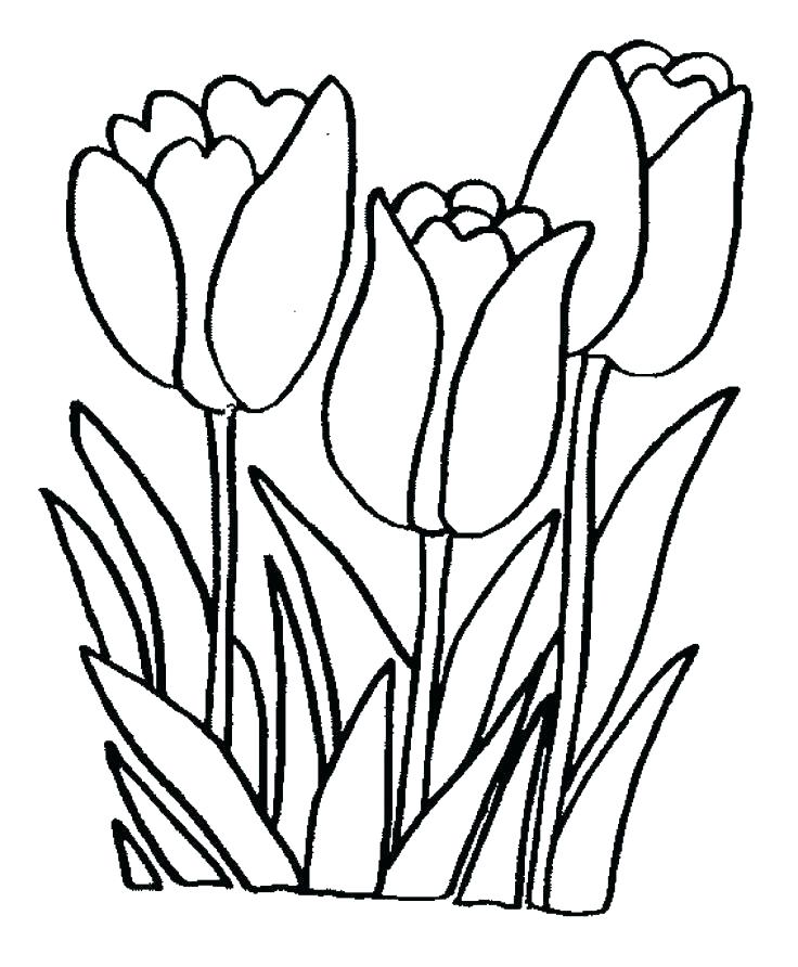 736x892 Easy Coloring Pages To Draw Easy Flower Coloring Pages Lovely