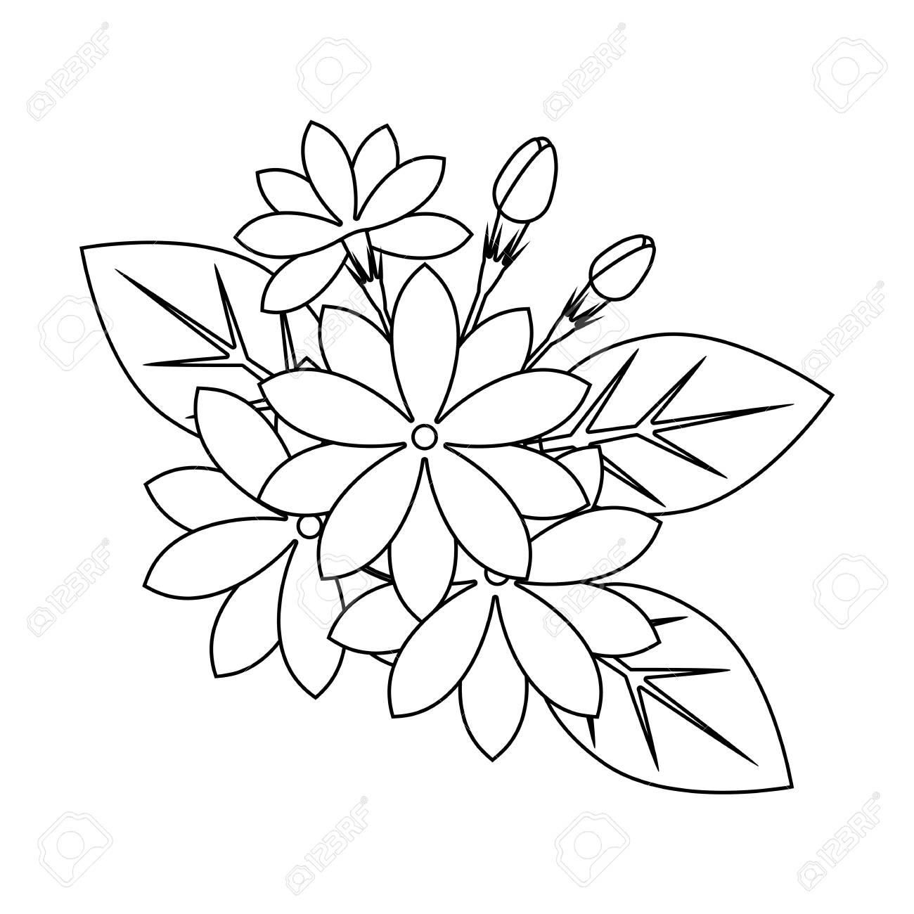 Flower Drawing Pinterest | Free download best Flower Drawing ...