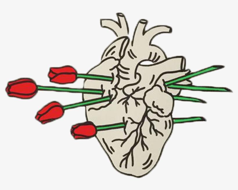 820x657 Roses Heartbreak Relationship Aesthetic Red Tumblr