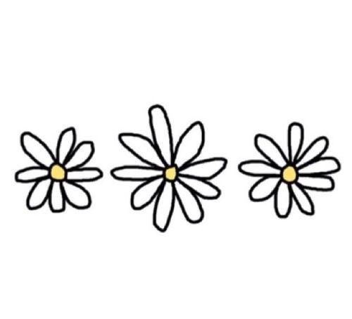 500x453 Flowers Transparent Stuffffff In Tumblr Transparents