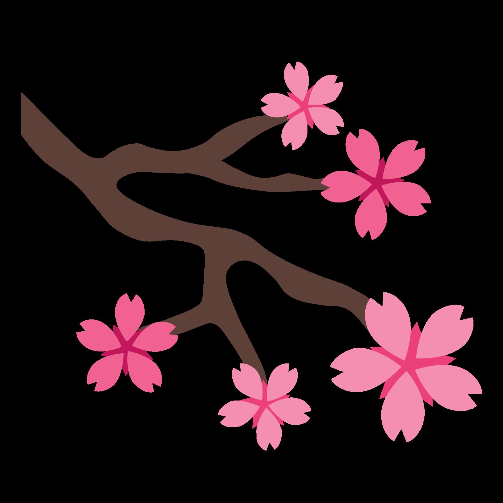 1600x1600 Cherry Blossom Clipart Transparent Tumblr