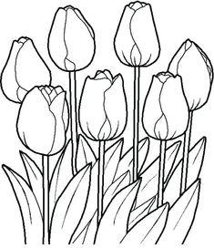 Flower Garden Drawing