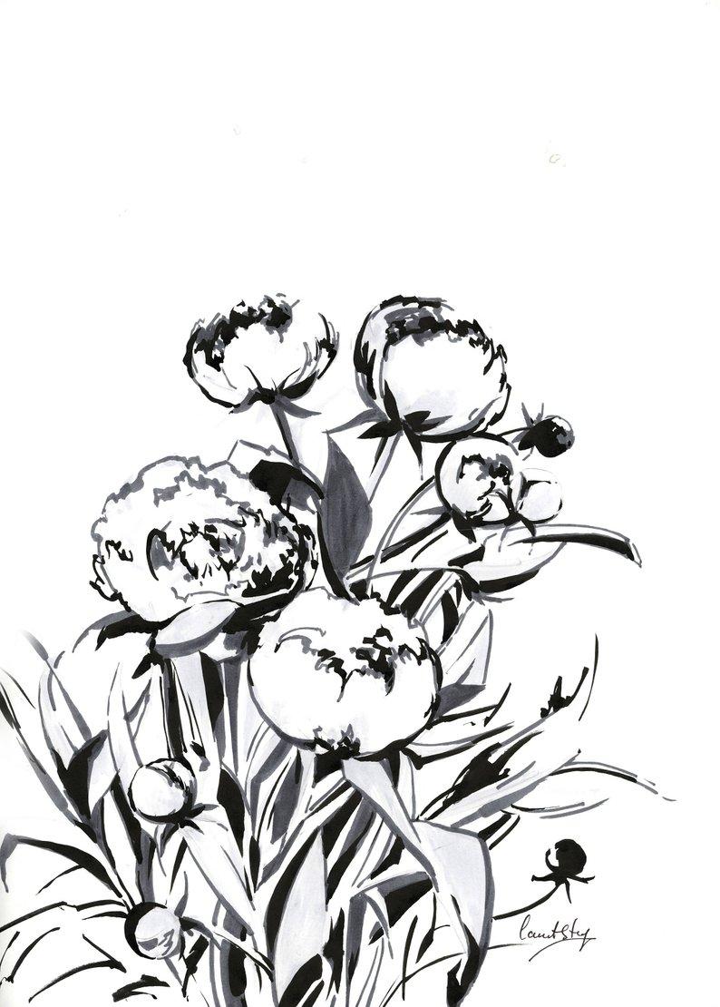 794x1110 peonies ink drawing original ink drawing flowers black and etsy
