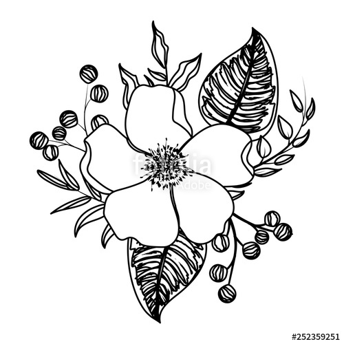 500x500 Flower With Leaves Drawing Stock Image And Royalty Free Vector