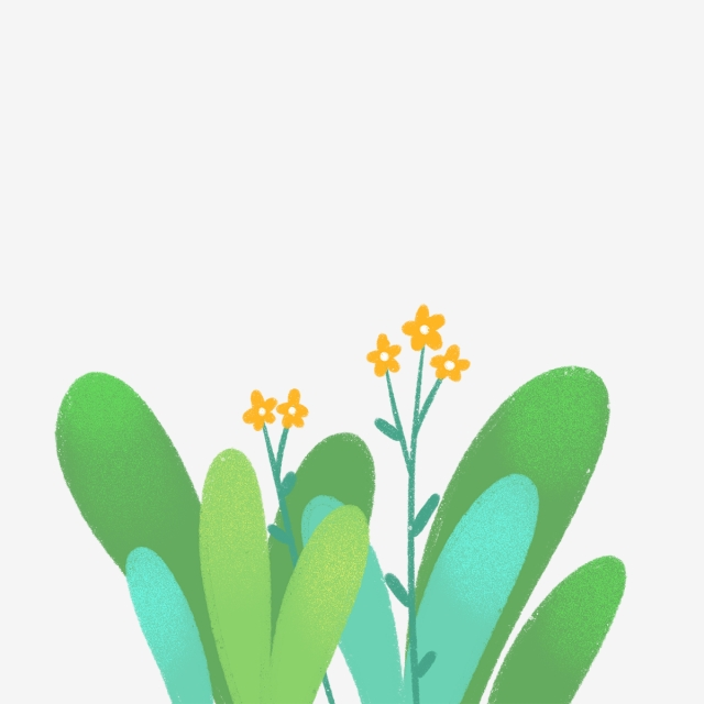 640x640 hand drawn small flowers and leaves, drawing, nature, hand drawn