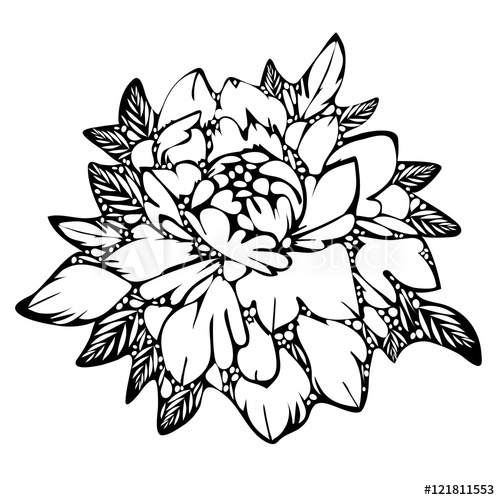 500x500 Abstract Flower, Black And White Bud Leaves, Monochrome Sketch
