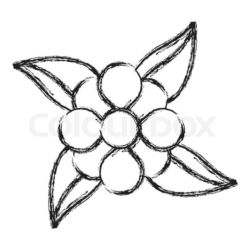 800x800 Sketch Flower Leaves Natural Stock Vector Colourbox