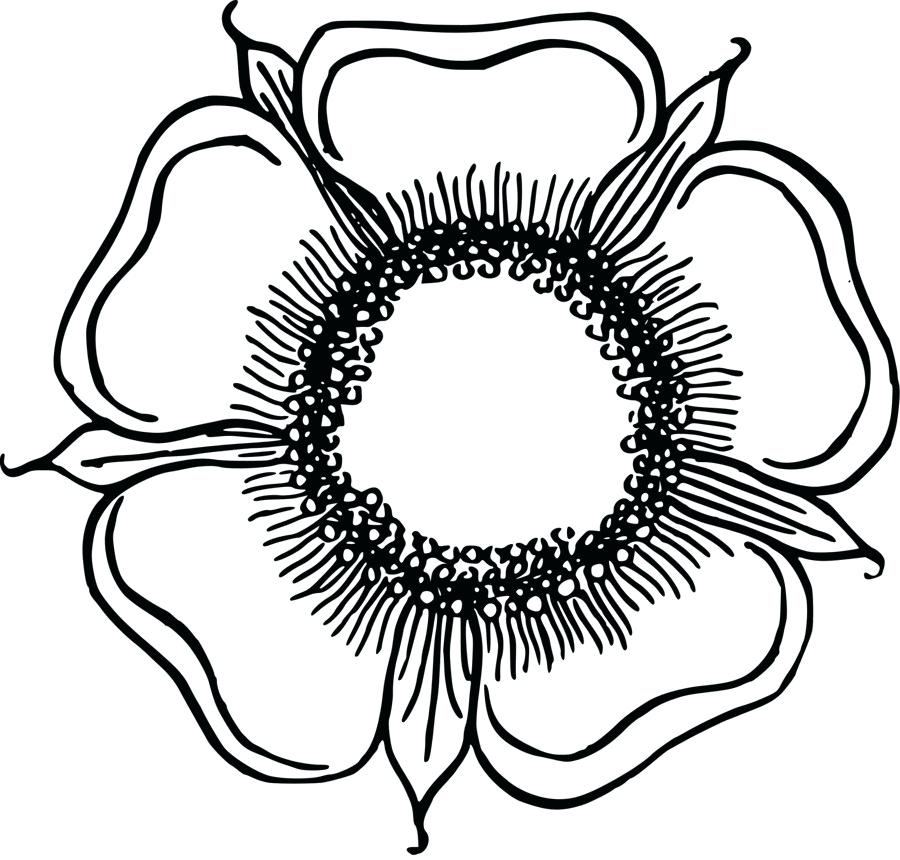 900x860 Flower Drawing Clip Art Bunch Of Flowers Drawing Bunch Of Flowers