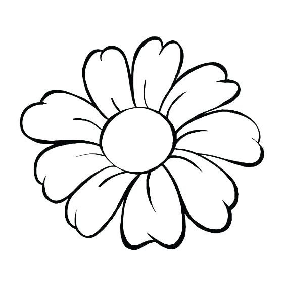 564x589 Flowers Line Drawing