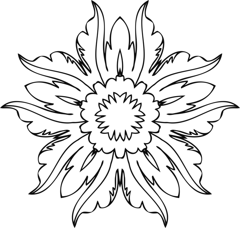 789x750 Hd Drawing Line Art Floral Design Flower
