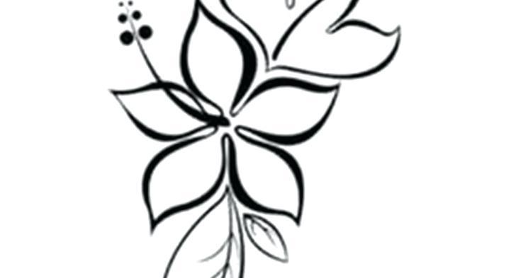 728x393 Drawing Of Lotus Flower