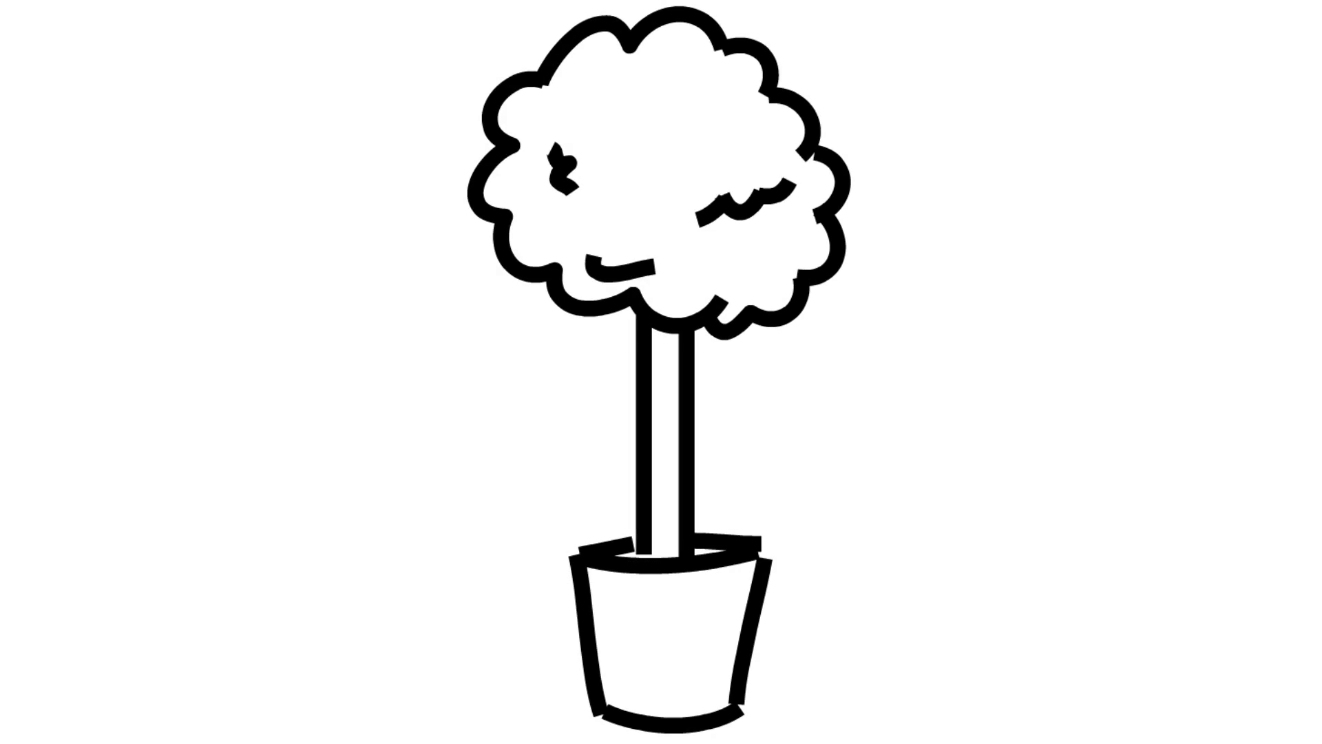 1920x1080 Plant In A Pot Flower Line Drawing Illustration Animation