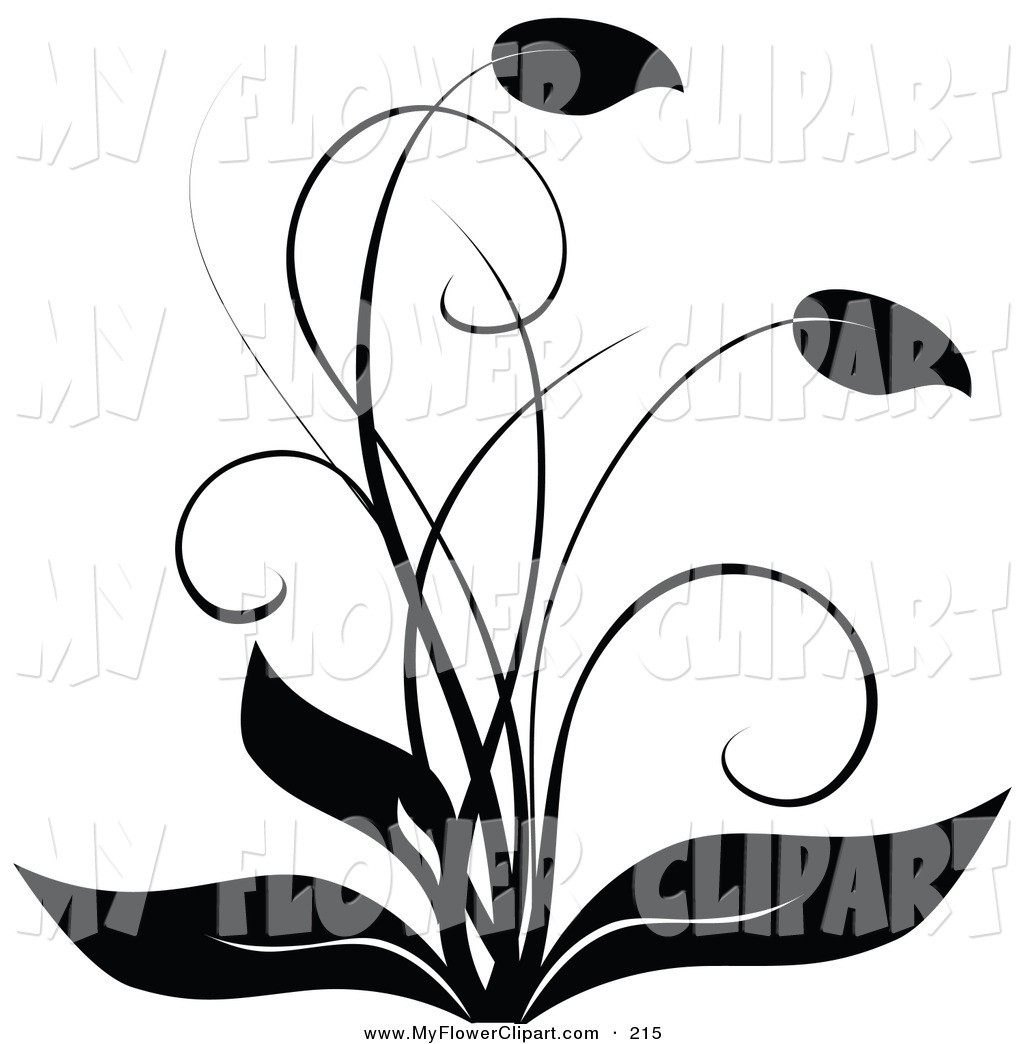 1024x1044 Flower Line Drawing Clip Art Free Black And White