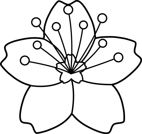 550x519 Flower Line Drawing Clip Art For Free Clip Art