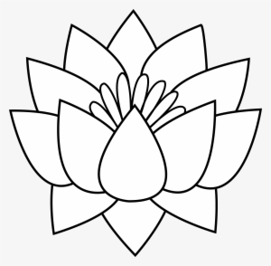 300x294 White Flower Png, Free Hd White Flower Transparent Image