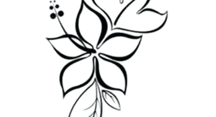 728x393 Flower Drawing Clip Art Blood Cabbage Rose Flower Vase Drawing