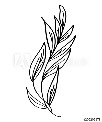 417x500 Hand Drawn Modern Flowers Drawing And Sketch Floral With Line Art
