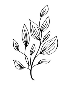 250x300 Floral Line Drawing Royalty Free Vectors