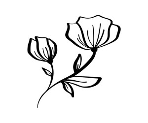 300x250 Vector Line Art Design Flowers Royalty Free Vectors