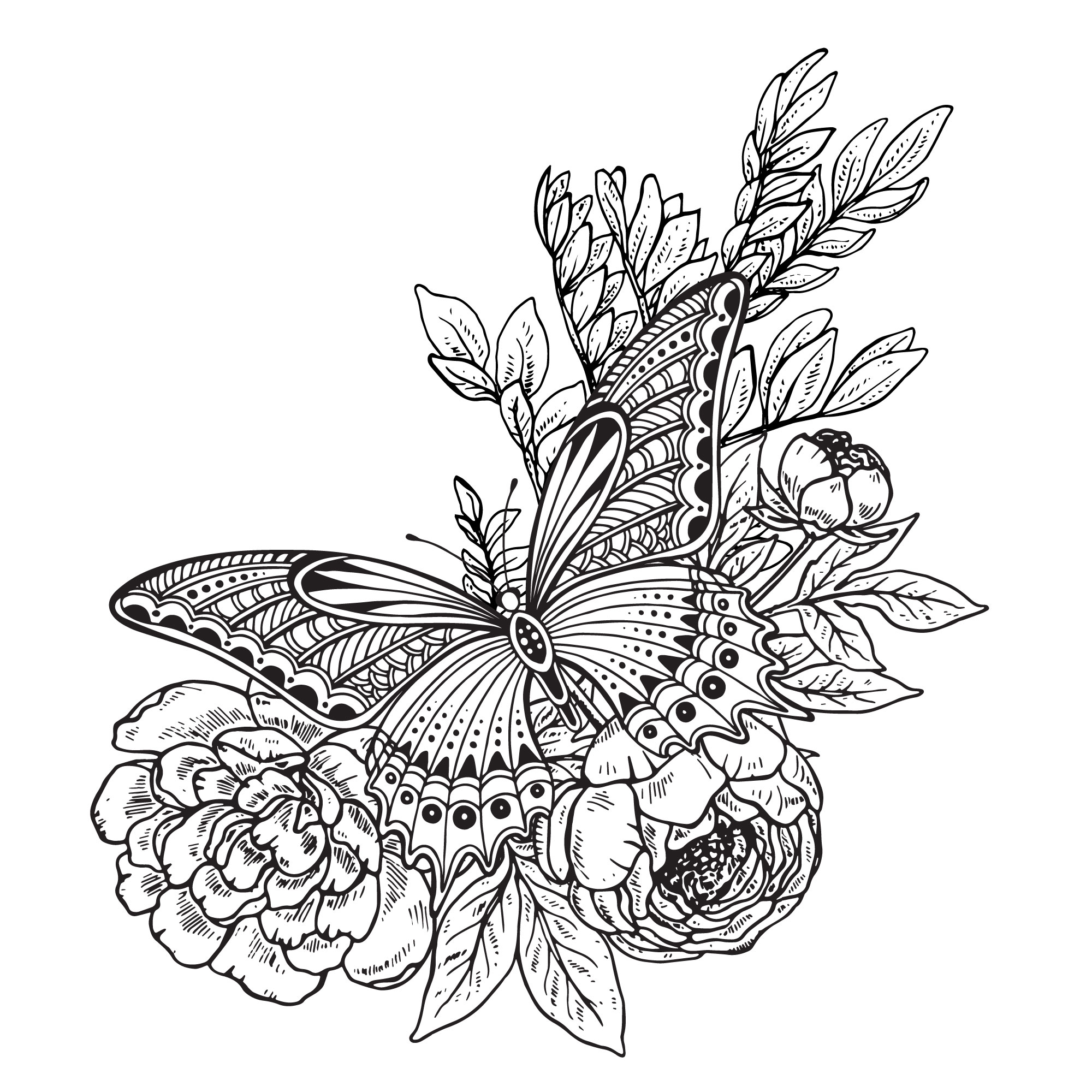 2000x2000 Butterfly Flowers Decor Drawing Vector