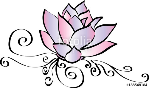 500x296 Elegant Pink Lotus Flower Drawing Stock Image And Royalty Free