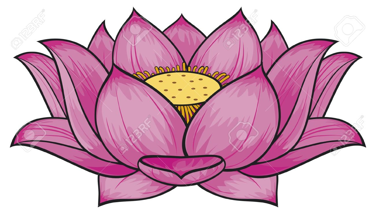 1300x742 Huge Collection Of 'lotus Flower Drawing Color' Download More