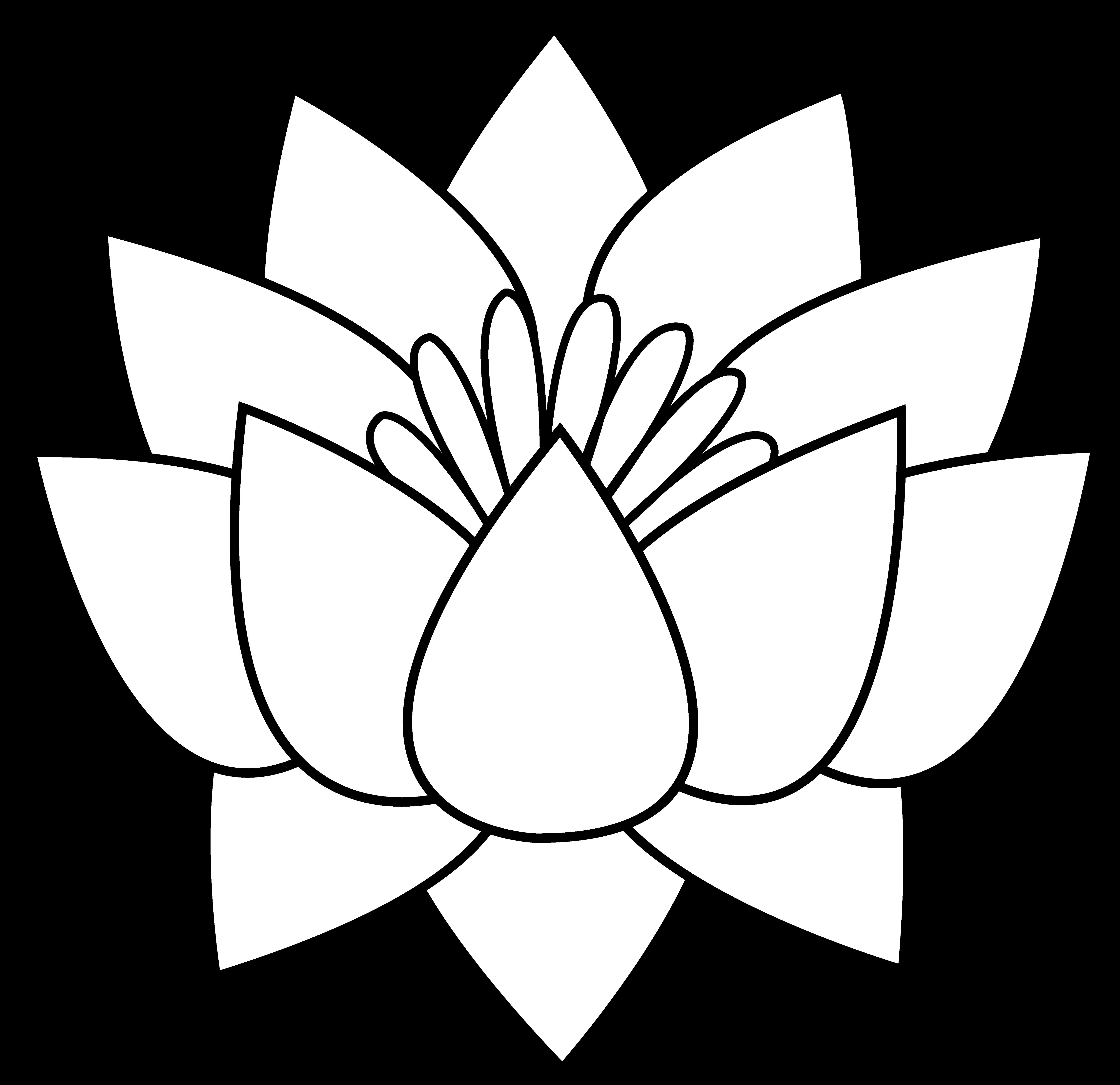 Flower Outline Drawing | Free download best Flower Outline