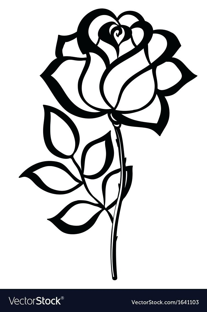 716x1080 rose outlines rose outlines pictures rose tattoo outline images