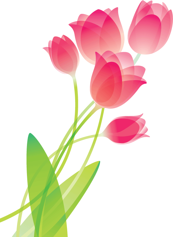 571x781 Collection Of Free Pastel Drawing Tulip Download On Ui Ex