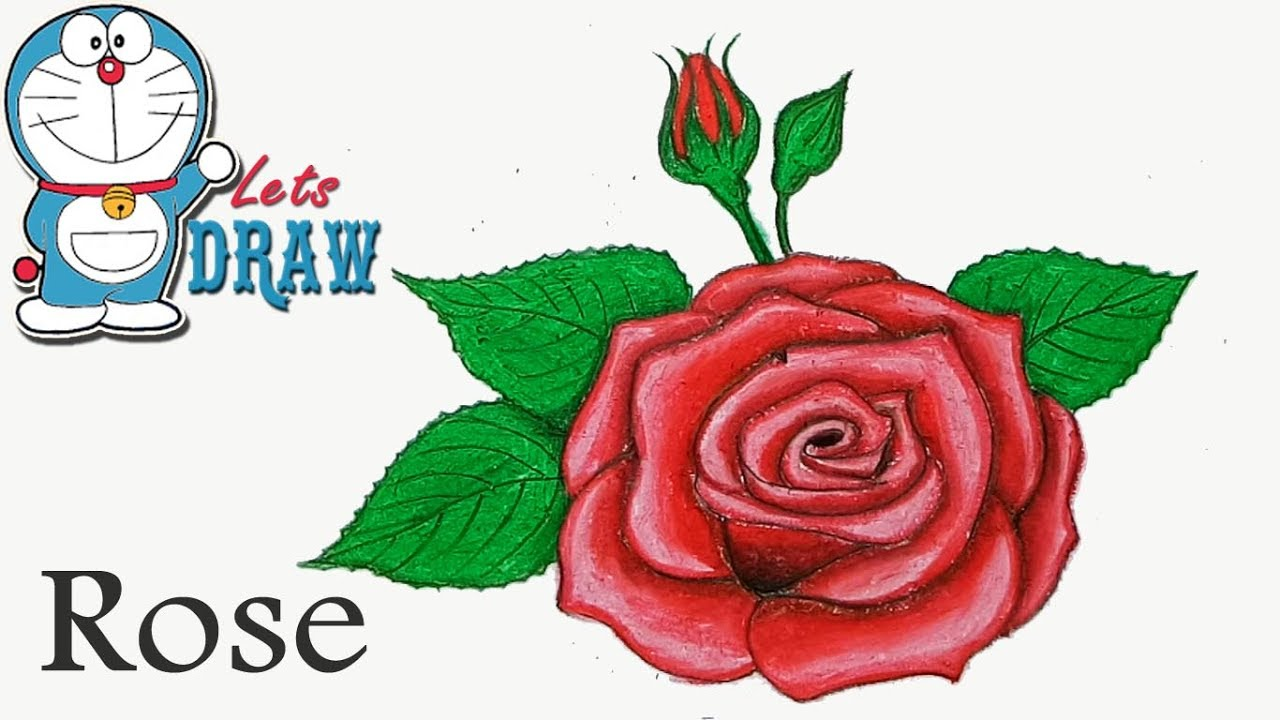 1280x720 How To Draw Rose With Oil Pastel Step