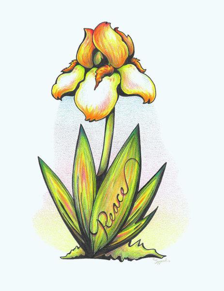 463x600 Pastel Flower Drawings
