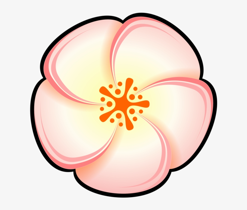 820x697 Peach Watercolor Painting Flower Pastel
