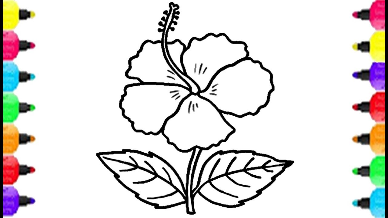 1280x720 Flower Coloring Pages Coloring Hibiscus With Marker Pen Learn