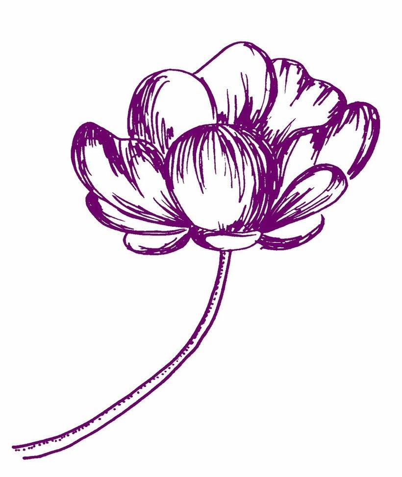 820x974 Flower Pen Cliparts